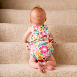 Flame retardants are found in carpets, furniture, and electronics in the home